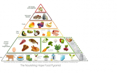 Diet Pyramid in moderation
